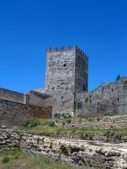 The splendid castle of Enna