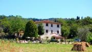 Panorama of the villa