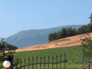 Vue Sibillini montagnes
