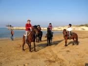 Excursion on horseback