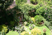 Suite in Sorrento: Garden of the Suite Alimuri in Sorrento